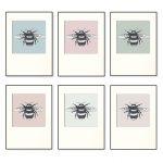 Bumble Bee Print Set X 6-0