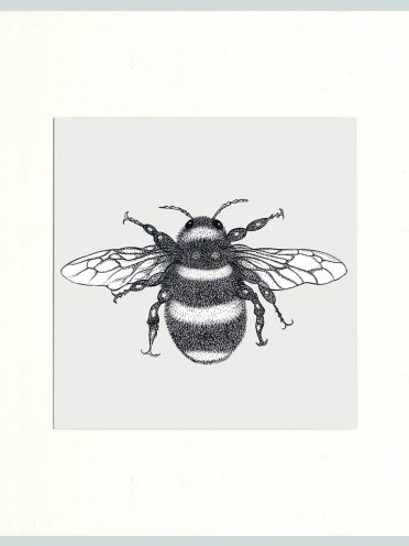 Bumble Bee Print (Cream)-0