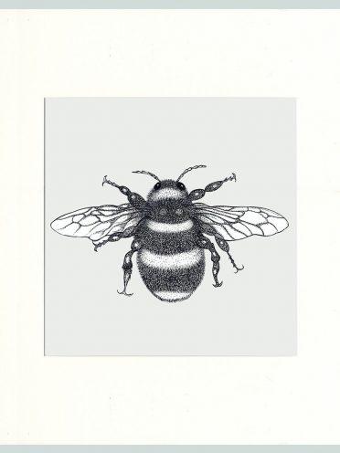 Bumble Bee Print (Cream)-0