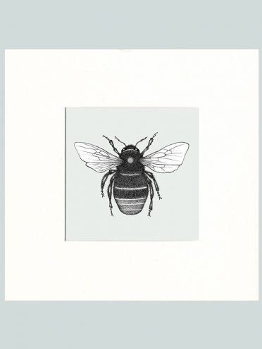 Red Tailed Bumble Bee Print (Cream)-0