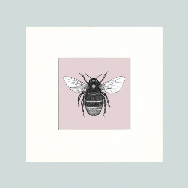Red Tailed Bumble Bee Print (Pink)-0