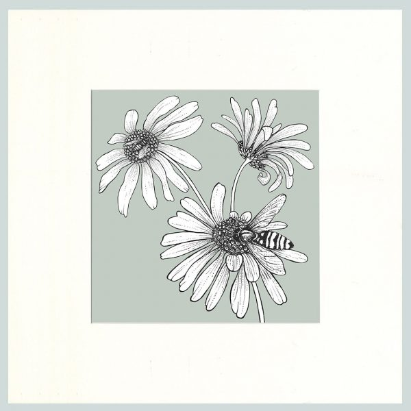 Hoverfly & Daisies Print (Green)-0