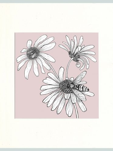 Hoverfly & Daisies Print (Pink)-0