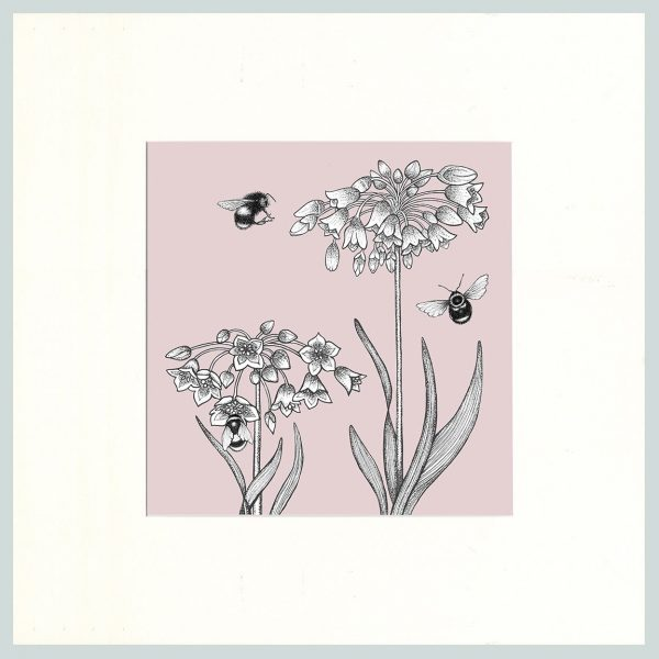 Honey Lily & Bees Print (Pink)-0