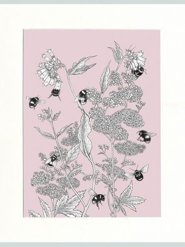 Meadowsweet & Bees Print (Pink)-0