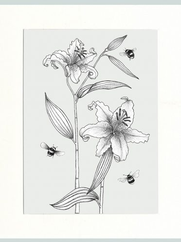 Lily & Bees (Cream)-0