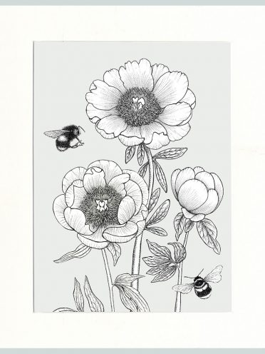 Peony & Bees (Cream)-0