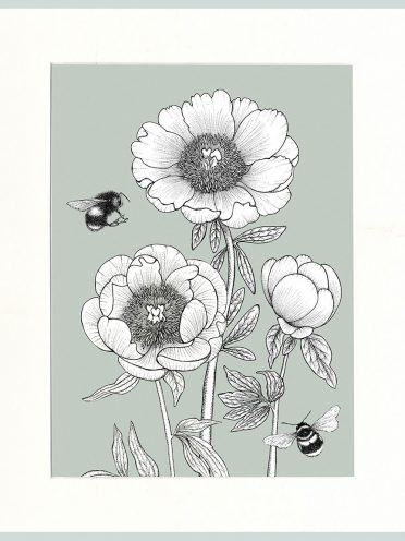 Peony & Bees (Green)-0