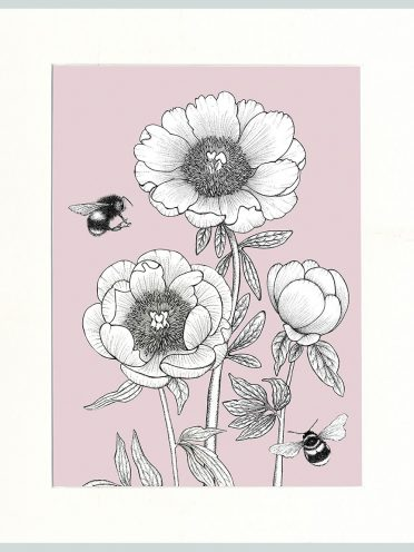 Peony & Bees (Pink)-0