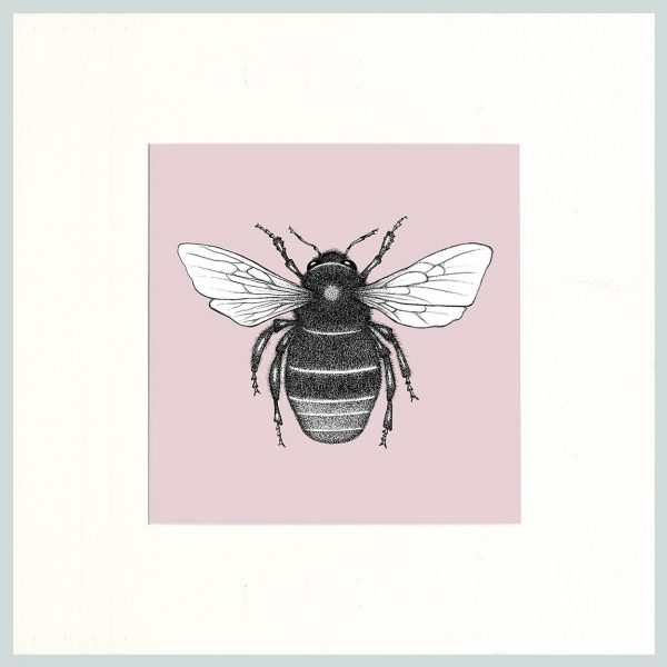 Red Tailed Bumble Bee (Pink)-0